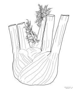 como cultivar apio españa scaled