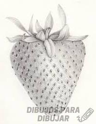 como dibujar fresas