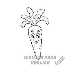 fotos de zanahorias
