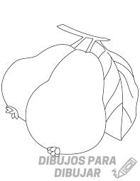 guayaba como planta medicinal