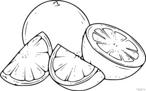 imagen de una mandarina