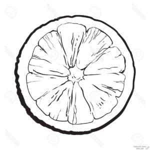 imagenes de naranjas para dibujar 1