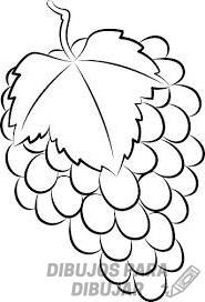 imagenes de uvas para imprimir