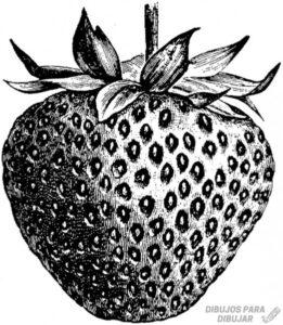 imajenes de fresas