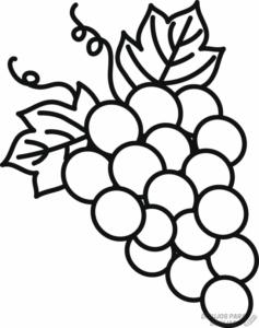 uvas para colorear