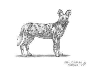 animales para pintar e imprimir
