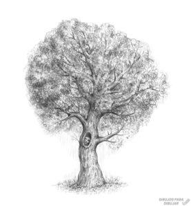 arbolito dibujo
