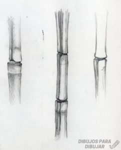 arte en bambu