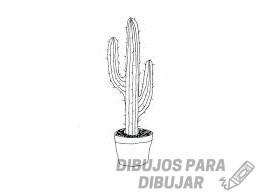 cactus para imprimir