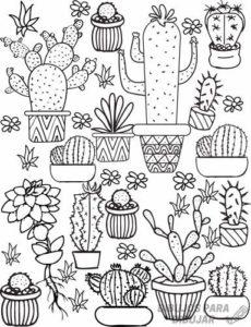 cactus para pintar