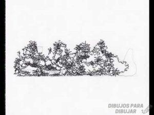como pintar arbustos