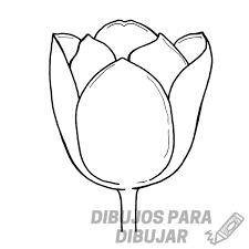 cuadro tulipanes