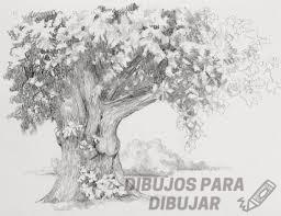 dibujos de arboles a lapiz