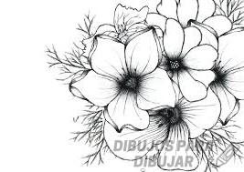 dibujos para colorear flores