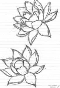 flor de loto logo