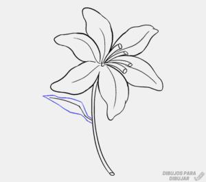 flores de lirios para pintar