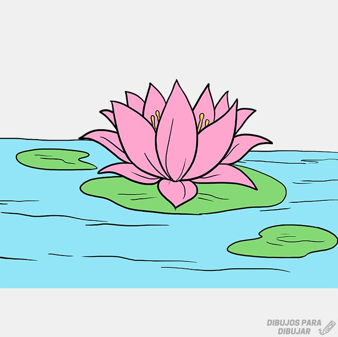 imagenes de una flor de loto