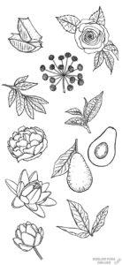 las plantas y sus nombres