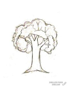 tronco de arbol dibujo