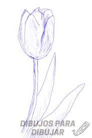 tulipanes para colorear