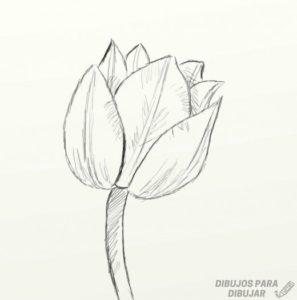 tulipanes para imprimir