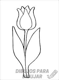 tulipanes para pintar